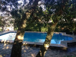 beautiful finca embraced by nature, Sineu