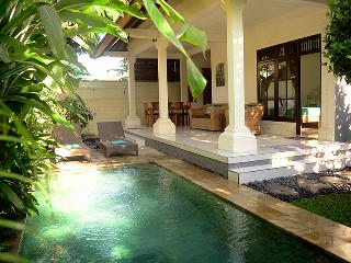 Villa Sofia - Perfect for 2 couples or a family, Ubud