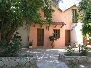 Olive tree Cottages 6
