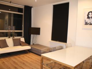 Nice apartment close to the city center, Rotterdam