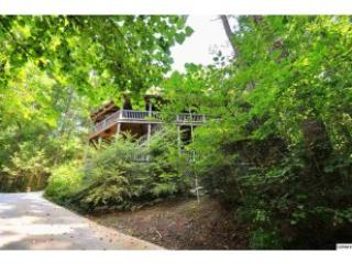 'Tree House': Nestled in woods, Pet friendly, Private, Spacious, vacation rental in Townsend