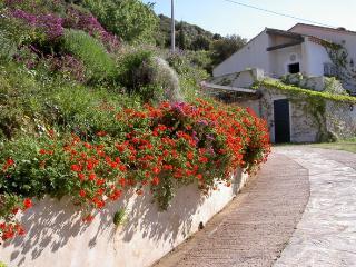 Maison à Monticello Corse