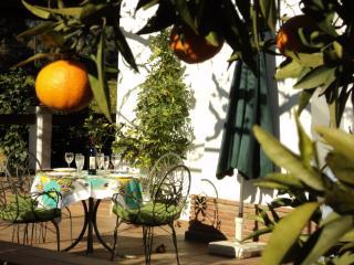 Casa restaurada S.XIX rodeada de arboles frutales