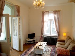 107m² große Etagenwohnung mit Balkon und WIGA, Dresde