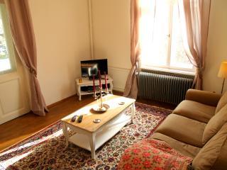 5-Zimmerwohnung in historischer Villa mit 160m2