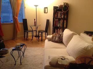 Appartement lumineux Buttes Chaumont - 2 personnes