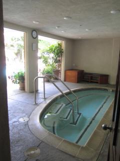 Jacuzzi hot tub spa.