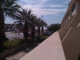 Studio 50m plage, centre ville La Grande Motte