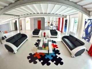 Loft architecte 224 m2 centre ville de Lyon
