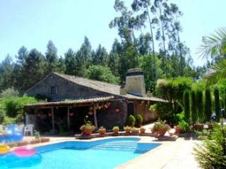 V5 Dornes - 5 Bedrooms Cottage w/ pool, Ferreira do Zezere