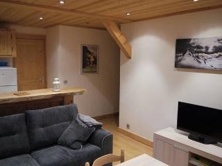 Appartement pour hiver, été, curistes 3 étoiles, Saint-Gervais-les-Bains