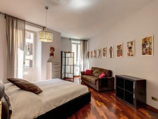 Elegant 2 Bedroom Apartment AC/Wifi, Roma