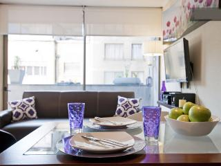 Furnished Apartments for Rent in Chile ♥  APT 302, Santiago