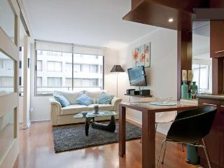 Furnished Apartments for Rent in Chile ♥ APT 810