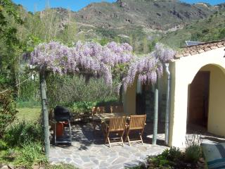 El Cortilljo Castaras, Nieles