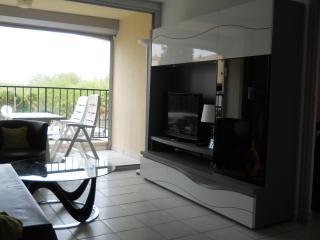 Bel appartement entre le port et la plage du Môle, Cap-d'Agde