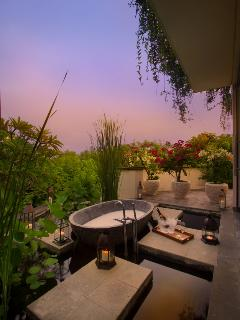 Master Bathroom outdoor bathtub