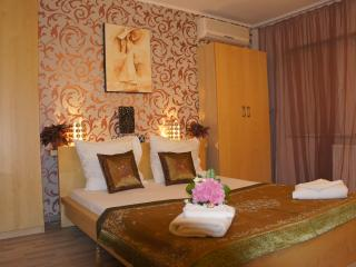 Cosy studio downtown Bucharest, Calea Victoriei
