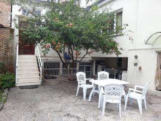 SUPER-LUX  APARTMENT/HOUSE IN CENTER TBILISI, Tbilisi