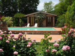 Casale Eredita country house pool, 70km north Rome