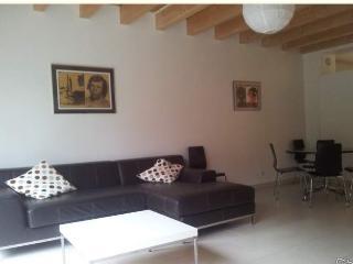 Maison atypique meublée - 160 m2 (4 pièces), Straatsburg