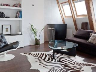 Luxury Loft Apartment in center, large roofterrace, Amsterdã