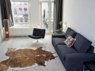 Stylish 2 bedroom apartment across Vondelpark, Ámsterdam