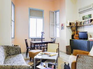 Lovely apartment on ben-yehuda
