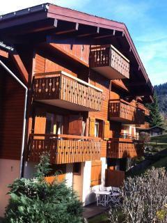 Ambiance Chalet,Mont d'Arbois,renove 2013,Sud
