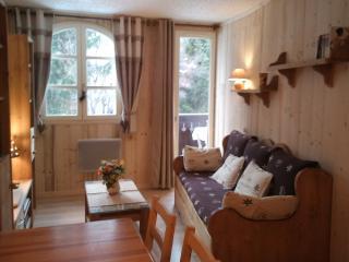 appartement 3 étoiles,intérieur style montagne, Chamonix