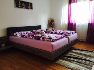 Gemütliches 3-Zimmer-Apartment in Frankfurt