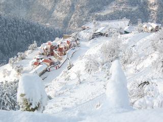 Manla Homes Shimla