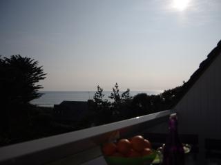 Les Lauzes bleues,appt 3 ch avec vue sur mer à 50m de la plage, Bretagne Sud