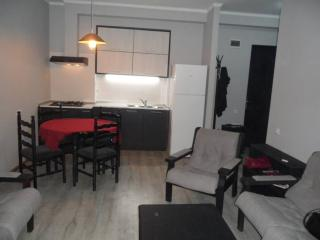 Newly repaired 2 room appartment in block of flat., Tbilisi