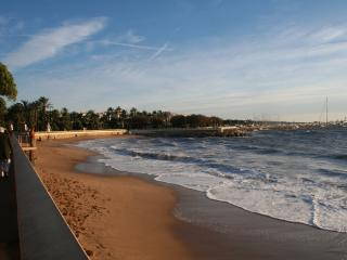 STUDIO CANNES PROCHE PLAGES ET PALAIS DES FESTIVAL, Cannes
