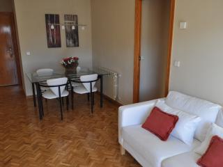 Madrid wonderful apartment. JUST REMODELED!!!