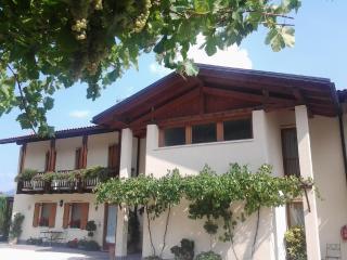 Soluzione ideale per vacanza in Trentino splendidi appartamenti nel verde