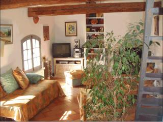 Location de vacances en Provence, Arles