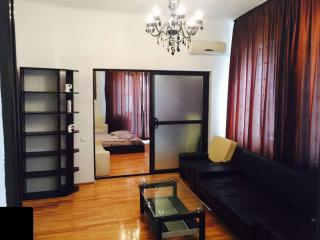 Modern 3 Room Apt in OLD TOWN