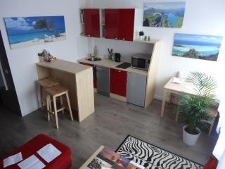 Bel appartement de 37m2 - 300m de la gare, Bourg Saint Maurice