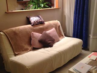 Appartement 2 pièces entièrement meublé, Thiais