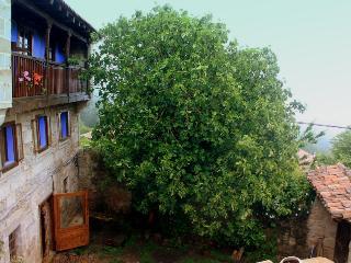 Casa rural,11 plazas,en el alto Ebro,Merindades,