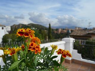 Duplex con terraza,increibles vistas a la Alhambra, Granada