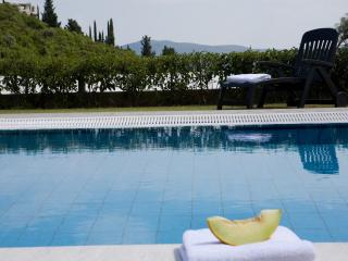 Private swimming pool - perfect place for relaxation under the sun