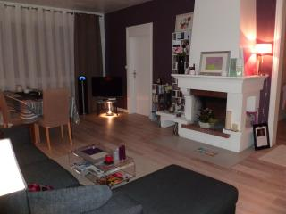APPARTEMENT 2/3 PIECES 81M2 PRES VERSAILLES 4 pers, Noisy-le-Roi