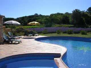 Tilleul, 6 personnes dans grand mas avec piscine, Suze-la-Rousse