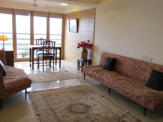 Beautiful spacious harbour view apartment
