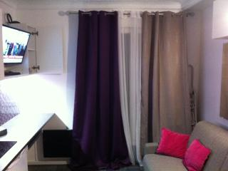 BEAUTIFUL SMALL AND COSY STUDIO PARIS 15eme