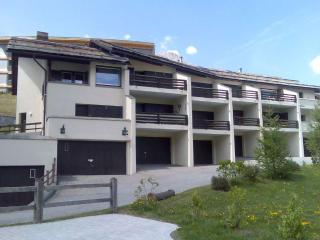 Family & Spacious Alpine Apartment with 7 beds, Celerina