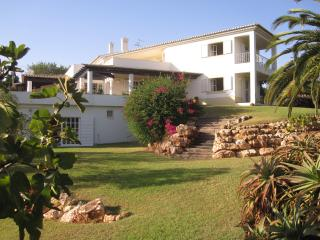 grande maison avec piscine, jardin
